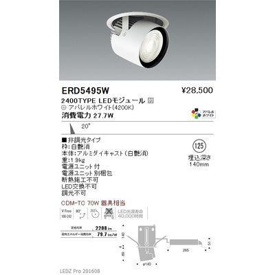 遠藤照明 LEDZ ARCHI series ダウンスポットライト ERD5495W