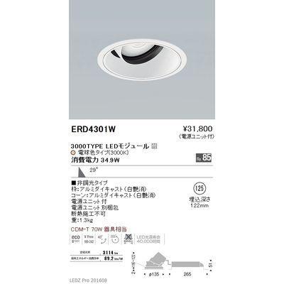 遠藤照明 LEDZ ARCHI series ユニバーサルダウンライト ERD4301W