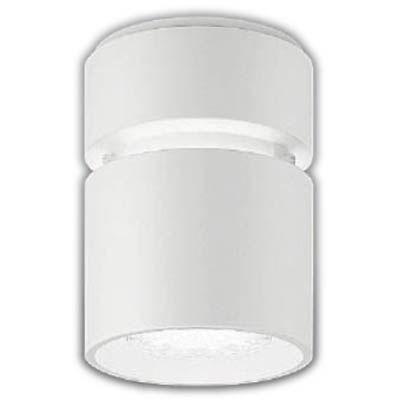 遠藤照明 LEDZ HIGH-BAY series シーリングダウンライト ERG5091W