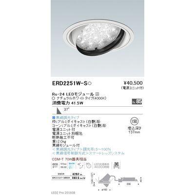 遠藤照明 LEDZ Rs series ユニバーサルダウンライト ERD2251W-S