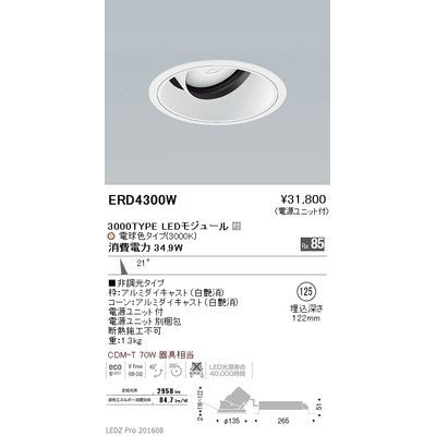 遠藤照明 LEDZ ARCHI series ユニバーサルダウンライト ERD4300W