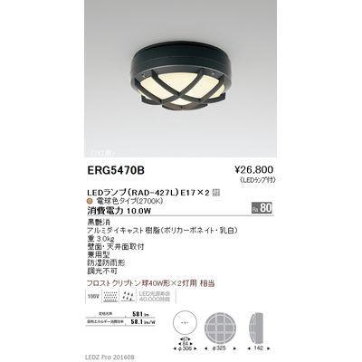 遠藤照明 STYLISH LEDZ series アウトドアブラケットライト/アウトドアシーリングライト ERG5470B