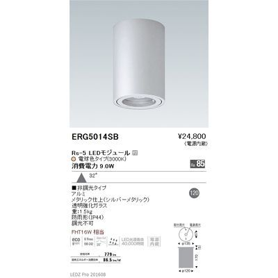遠藤照明 STYLISH LEDZ series 軒下用シーリングダウンライト ERG5014SB