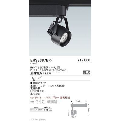 遠藤照明 LEDZ Rs series スポットライト ERS3387B