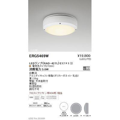 遠藤照明 STYLISH LEDZ series アウトドアブラケットライト/アウトドアシーリングライト ERG5469W