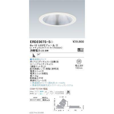 遠藤照明 LEDZ Rs series グレアレス ユニバーサルダウンライト ERD2307S-S