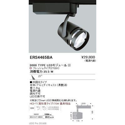 遠藤照明 LEDZ ARCHI series 生鮮食品用照明(スポットライト) ERS4465BA
