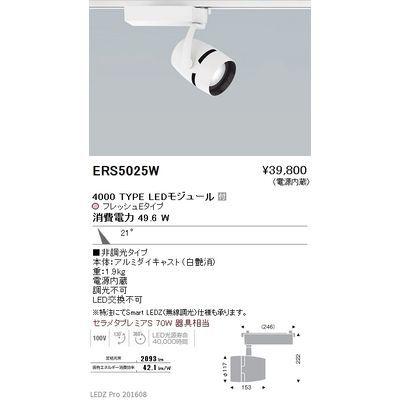 遠藤照明 LEDZ ARCHI series 生鮮食品用照明(スポットライト) ERS5025W