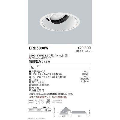 遠藤照明 LEDZ ARCHI series 生鮮食品用照明(ユニバーサルダウンライト) ERD5338W