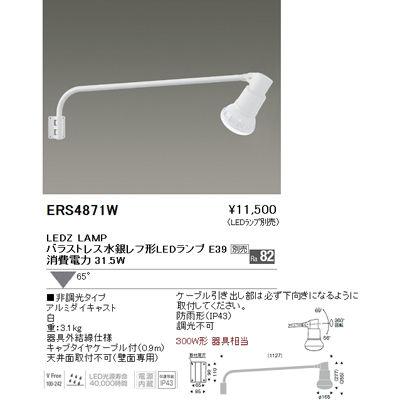遠藤照明 LEDZ LAMP series アウトドアスポットライト(看板灯) ERS4871W