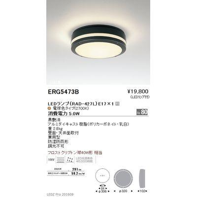 遠藤照明 STYLISH LEDZ series アウトドアブラケットライト/アウトドアシーリングライト ERG5473B