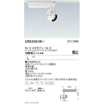 遠藤照明 LEDZ Rs series スポットライト ERS3391W