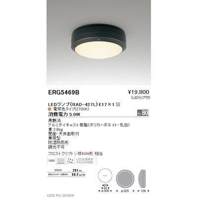 遠藤照明 STYLISH LEDZ series アウトドアブラケットライト/アウトドアシーリングライト ERG5469B