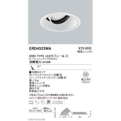 遠藤照明 LEDZ ARCHI series 生鮮食品用照明(ユニバーサルダウンライト) ERD4525WA
