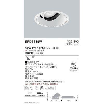 遠藤照明 LEDZ ARCHI series 生鮮食品用照明(ユニバーサルダウンライト) ERD5339W