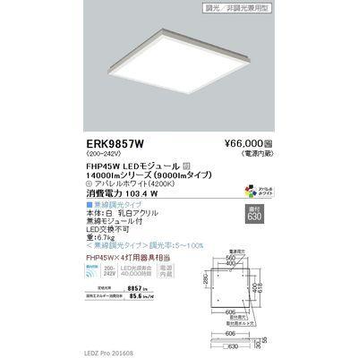 遠藤照明 LEDZ FLAT BASE series スクエアベースライト 下面乳白パネル形 ERK9857W