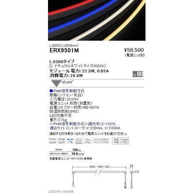 遠藤照明 LEDZ series 間接照明(屋内外兼用) ERX9501M