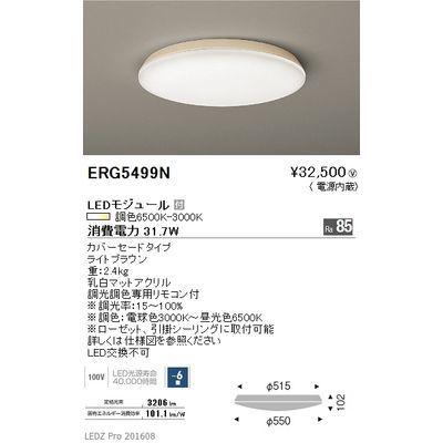 遠藤照明 LEDZ 調光調色シリーズ 調光調色シーリングライト ERG5499N