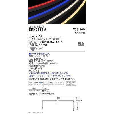 遠藤照明 LEDZ series 間接照明(屋内外兼用) ERX9513M