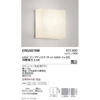 遠藤照明 アウトドア ブラケット〈LEDランプ別売〉 ERG5079W