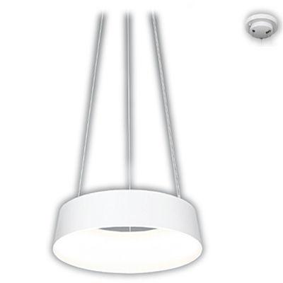 遠藤照明 ペンダントライト〈電源内蔵〉 ERP7317W