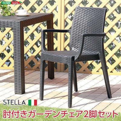 ホームテイスト ガーデン肘付チェア 2脚セット【ステラ-STELLA-】(ガーデン カフェ) (ブラック) SH-05-11234