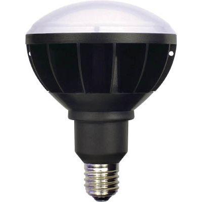 日動工業 日動 LED交換球 ハイスペックエコビック50W E39 本体黒 ワイド L50WE39WBK50KN