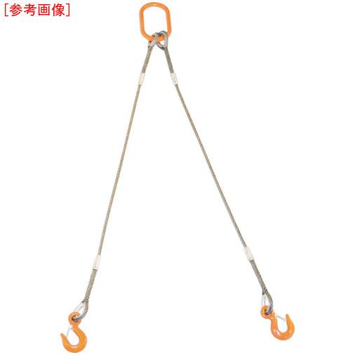 トラスコ中山 TRUSCO 2本吊りWスリング フック付き 6mmX2m GRE2P6S2