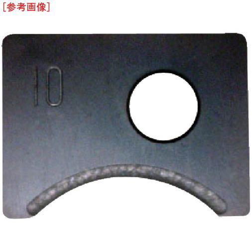 富士元工業 【3個セット】富士元 Rヌーボー専用チップ 超硬M種 6R NK2020 N54GCR6R