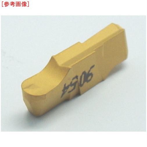イスカルジャパン 【10個セット】イスカル A CG多/チップ IC20 GIPI3.001.5U-1