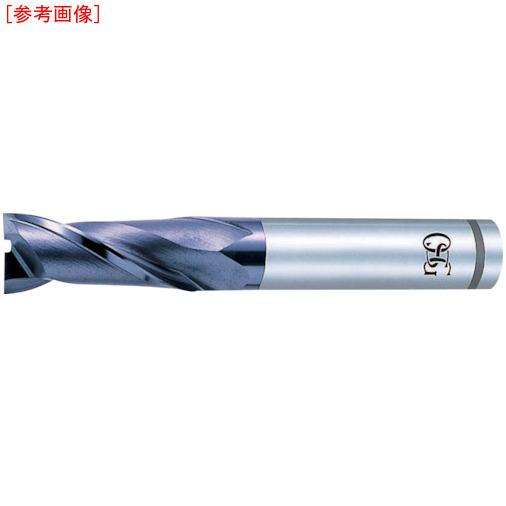 オーエスジー OSG ハイスエンドミル 8451690 V-XPM-EDL-19
