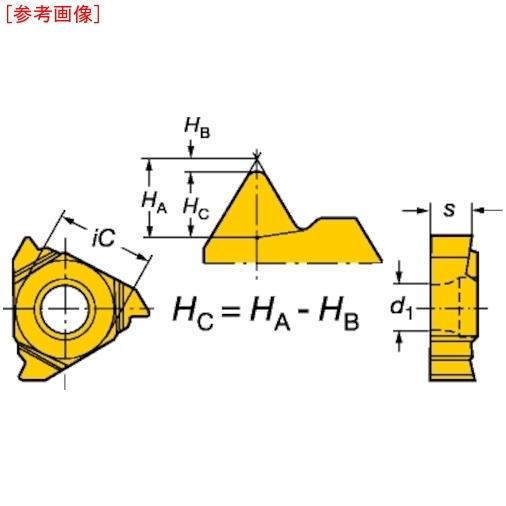サンドビック 【10個セット】サンドビック T-Max U-ロック ねじ切りチップ 1020 R166.0L11WH0-1