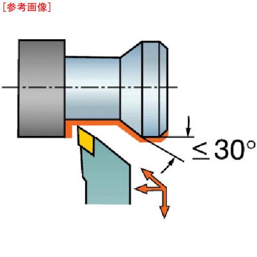 サンドビック サンドビック QSホールディングシステム コロターン107用バイト QSSDJCR1212E11