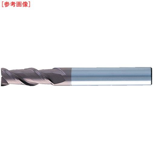 日進工具 NS 無限コーティング 2枚刃EM MSE245 Φ12 MSE24512