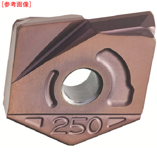 日立ツール 【2個セット】日立ツール カッタ用チップ ZCFW300-R1.0 BH250 BH250 ZCFW300R1.0-1