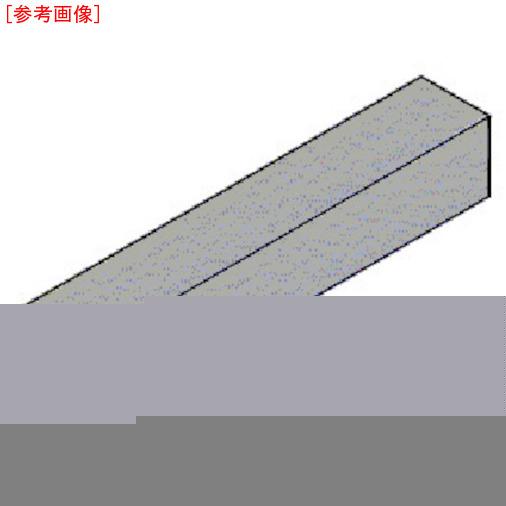 タンガロイ タンガロイ 外径用TACバイト CFGTR2525