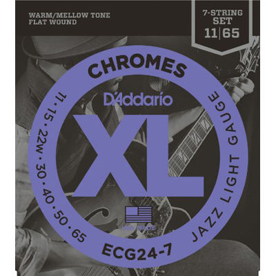 DADDARIO 【10個セット】ECG24-7 エレキギター弦フラットワウンド弦 / D'Addario 0019954925918