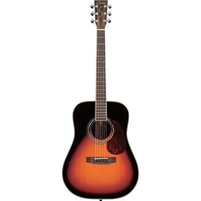 【正規販売店】 SYAIRI YD-5R 3TS 3TS アコースティックギター SYAIRI ソフトケース付き 4534853521543 4534853521543, 行列のできるペット館:b79921e2 --- portalitab2.dominiotemporario.com