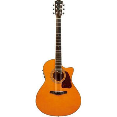 SYAIRI YE-5M/AM アコースティックギター アンバーナチュラル E-Acoustic シリーズ YE5MAMSC ソフトケース付き 4534853522649