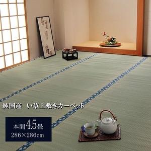 その他 純国産/日本製 双目織 い草上敷 『ほほえみ』 本間4.5畳(約286×286cm) ds-783280
