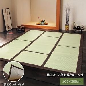 その他 純国産/日本製 い草カーペット い草マット 『F蔵』 ブラウン 約200×300cm 裏:ウレタン張り コンパクト収納可 ds-783351