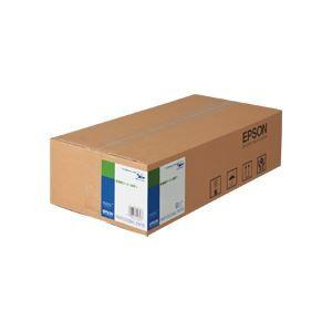 その他 エプソン EPSON 普通紙(厚手) A0ロール 841mm×50m EPPP90A0 1箱(2本) ds-966339