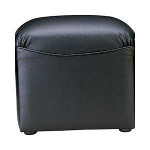 その他 アイコ 応接椅子 スツール ボックスタイプ レザー ds-1098513