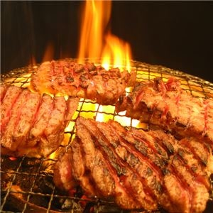 その他 亀山社中 タレ漬け焼肉・BBQセット 華咲きハラミ&華咲きひとくち牛モモ 3.78kg ds-1322799
