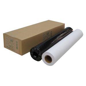 その他 (業務用セット) アジア原紙 大判インクジェット用紙 IJPR-5950R 2本入 【×2セット】 ds-1535933