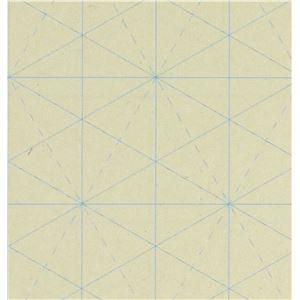 その他 (まとめ)アーテック サンドアート/砂絵用シート 【ソリッドドロー】 380×270mm 樹脂製 【×30セット】 ds-1563028