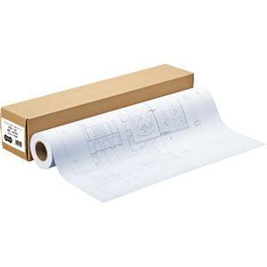 その他 (まとめ) TANOSEE インクジェット用コート紙 HG3厚手マット 44インチロール 1118mm×30m 1本 【×2セット】 ds-1572321