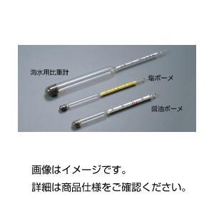 その他 (まとめ)ボーメ比重計 塩ボーメ【×10セット】 ds-1593187