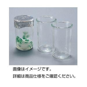 その他 (まとめ)プラントカップ 200ml 1箱(40個入)【×3セット】 ds-1594258