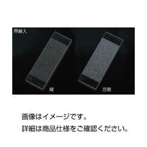 その他 (まとめ)界線入スライドグラス方眼1.0mm目盛 1枚【×3セット】 ds-1595050